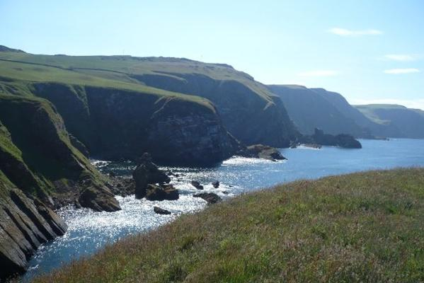 SEASIDE BEAUTY: St Abb's Head, Scotland.