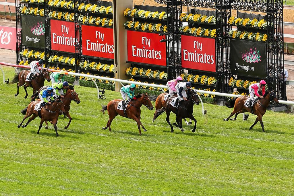 Horses cross the line in the 7 News Plate during 2012 Melbourne Cup.
