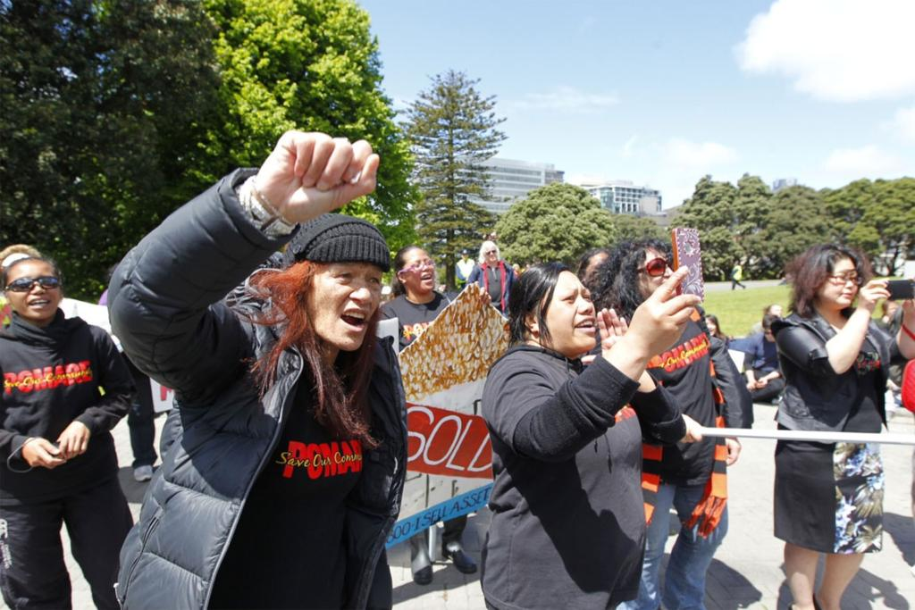 Protesters at parliament chant slogans to protest the sale of state houses.