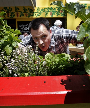 Sprouting out: James Pettingill with the planter boxes  outside his cafe.