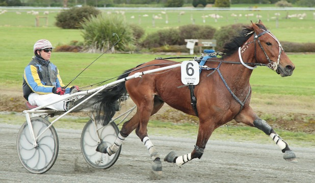 TRADING DAY: Trade Me Now provides Dexter Dunn with one of his four driving wins at Wyndham yesterday.