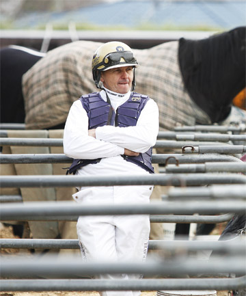 LAIDBACK LEAD-UP: Ricky May will drive Terror To Love, the horse his rivals will be lining up to beat today in the New Zealand Trotting Cup but May knows his way round the track – he has driven five previous cup winners.