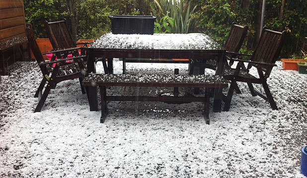 """HOLY HAIL: North Shore resident Helen Penman sent in this photo, showing hailstones """"as big as large chickpeas""""."""