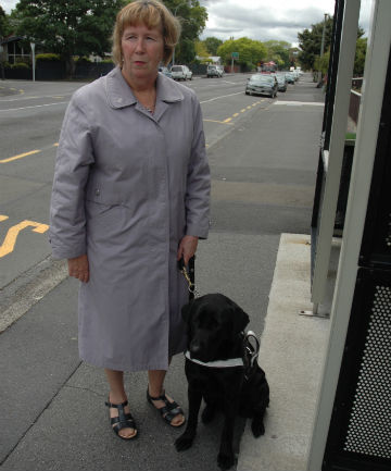 Going nowhere fast: Pam MacNeill and guide dog Chica at the Fergusson Dr stop where they usually catch the Airport Flyer to Wellington.
