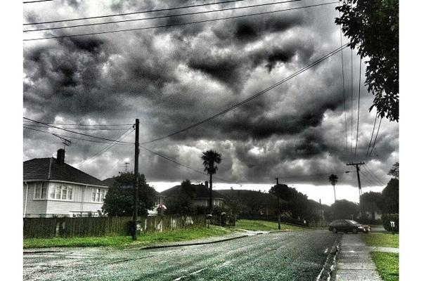 Auckland photo tweets of the week