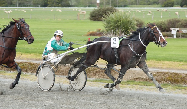 COMFORT ZONE: VC Windermere (Reon Tither) in winning form at Wyndham yesterday.