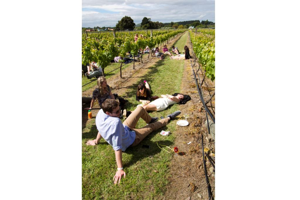 People take a break between the vines during Toast Martinborough 2012.