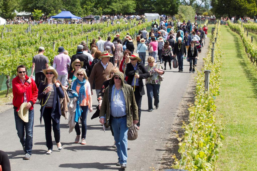 Crowds make their way between venues in the idyllic Martinborough setting.