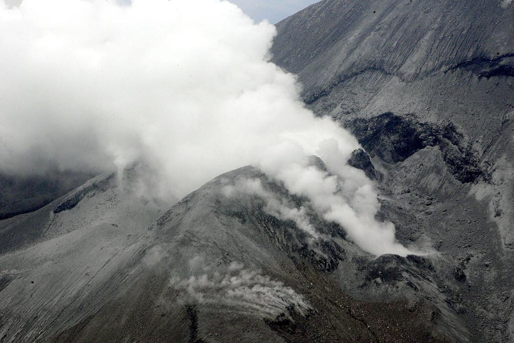 Steam rises from Mt Tongariro after it erupted.