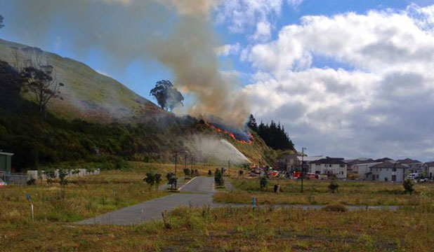 BLAZE: A fire at the Mt Wellington Domain in Auckland burns close to houses.