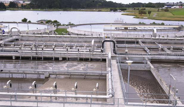 WASTEWATER SHOCK: Councillor George Wood fears plans to pay $166 million bringing Waitakere and Rodney wastewater to Albany's plant.