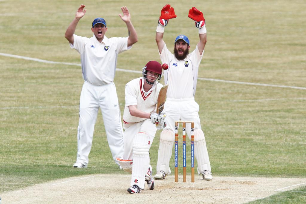 Takapuna's Mark Farmer (wicket keeper) and Nigel Collins appeal for the wicket of Papatoetoe's Stephen Money.