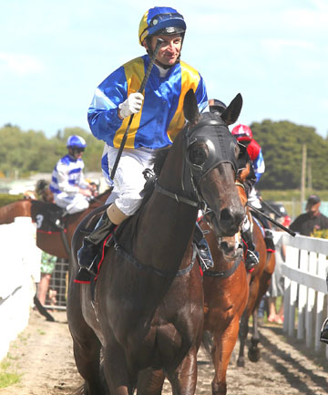SHE'S A LADY: Lady Kipling and Opie Bosson return to scale after winning last month's Gr II Auckland Thoroughbred Breeders' Stakes at Pukekohe. The pair contest Saturday's Captain Cook Stakes at Trentham.