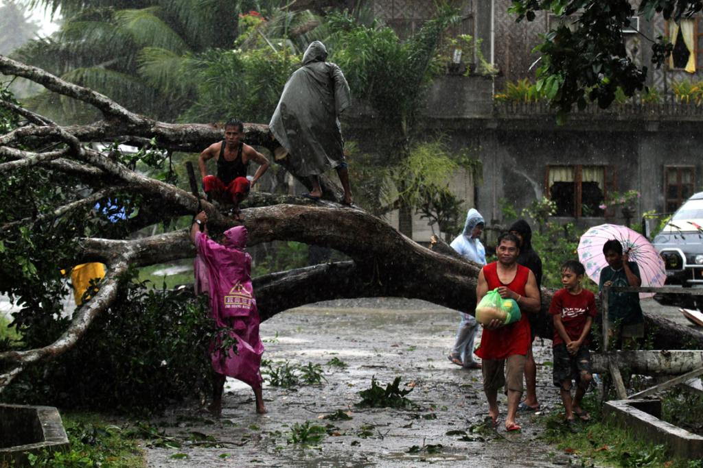Typhoon Bopha in the Philippines