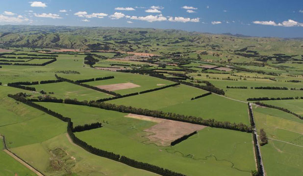 PRIME LAND: An aerial photo showing the two farms,  Tawaha  and  The Cutting, owned by the Jaspers family.