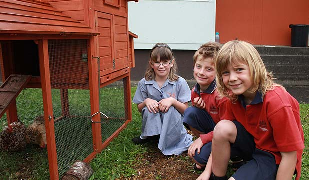 LOST PETS: On the brighter side pupils, from left: Tara Maclean, 7, Sylias Bachop, 7, and Blake Hunt, 7, are happy that there are still three chickens remaining at the school.