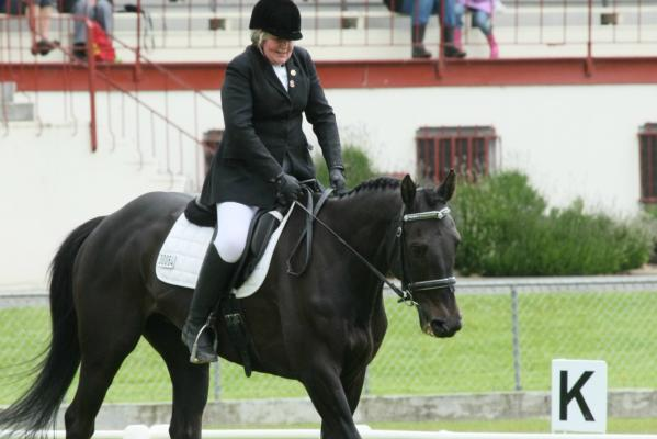 SI Dressage Champs in Gore
