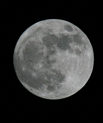 FLY ME TO THE MOON? Private Firm hopes to sell lunar trips.