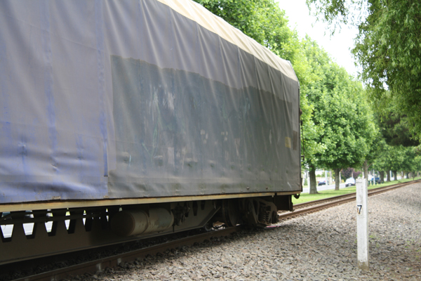 Train carriages derailed in Matamata