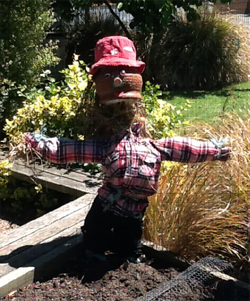 west end scarecrow