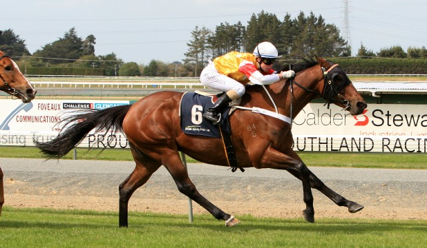 IN CONTROL: Ya Dreamin Jonesy (Toni Direen) races away with the $25,000 Coupland's Bakeries Crystals at Ascot Park today.