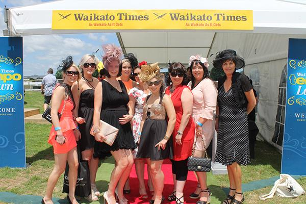 Tempo on the Lawn at Waikato Times Gold Cup.