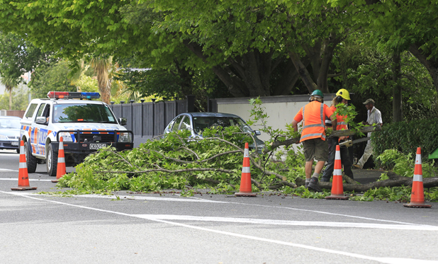 Blown away: Contractors work to clear a tree limb that fell across Maxwell Rd in Blenheim yesterday