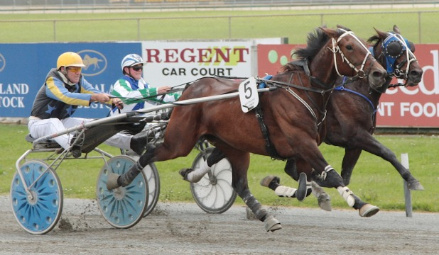 ON THE UP: Marchesa (No 5, Brian Norman) edges ahead of Releven Dream (Bronson Munro) to win the CRT Fuel Rebate Trot at Ascot Park yesterday.