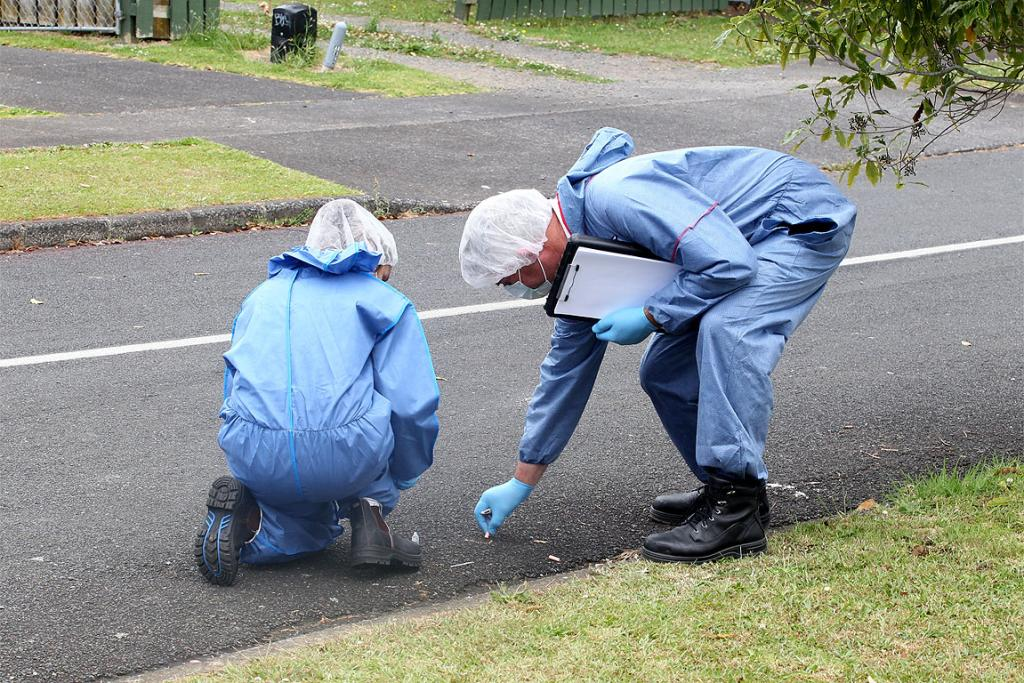 A police forensic team gather evidence after a homicide inquiry is launched in Ranui.