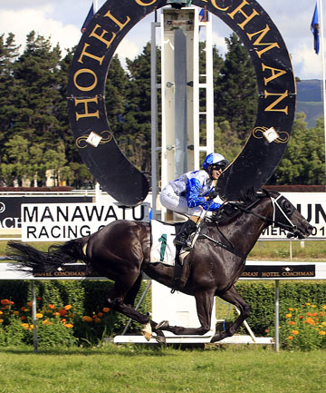 THE KING'S BACK: Sam Spratt celebrates the terrific return to form by Mufhasa in the Challenge Stakes at Awapuni.