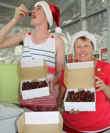 Rob's Rural Market fruit stall workers Matthew Ryley and Val Joyce, both of Earnscleugh, were busy selling cherries to customers on Monday.
