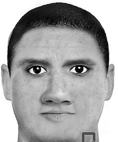 Nelson rapist sketched