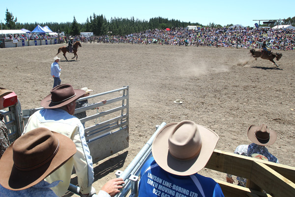 Graeme Gannon from Hawke's Bay in action at the Canterbury Rodeo in Mandeville, North Canterbury