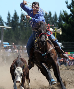 Wade Marshall from Invercargill competes in the rope and tie event at the Canterbury Rodeo in Mandeville, North Canterbury
