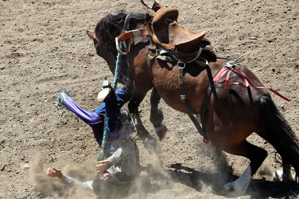 Cameron Wenn from Wanganui gets bucked off at the Canterbury Rodeo in Mandeville, North Canterbury