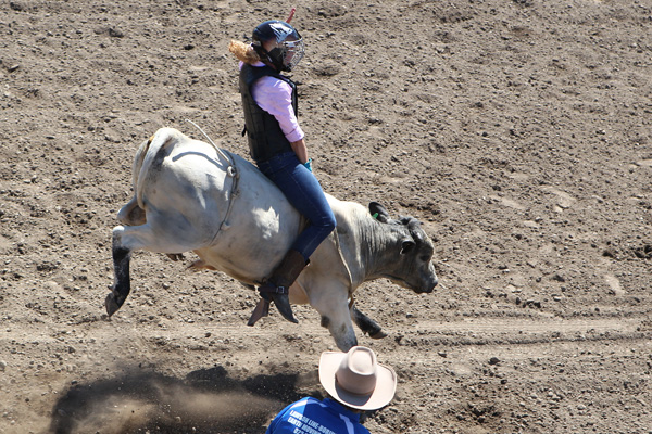 Libby Brent from Tai Tapu competes in the steer riding event at the Canterbury Rodeo in Mandeville, North Canterbury