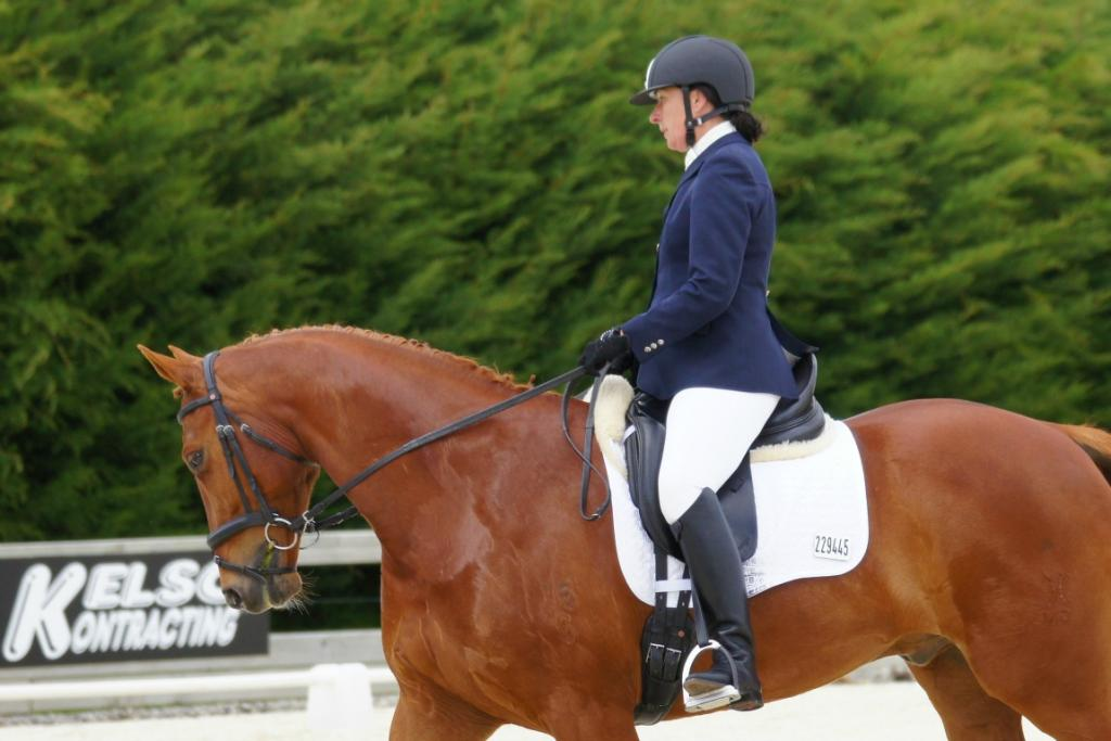 2012 South Island Dressage Champs
