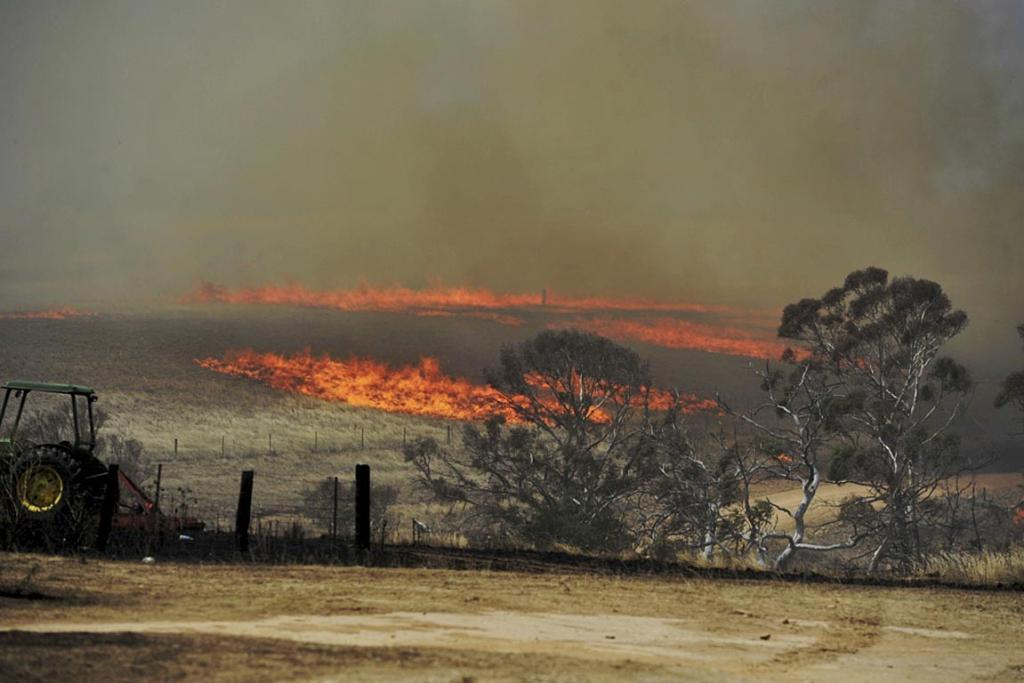 A bush fire burning near Cooma, south of Canberra.