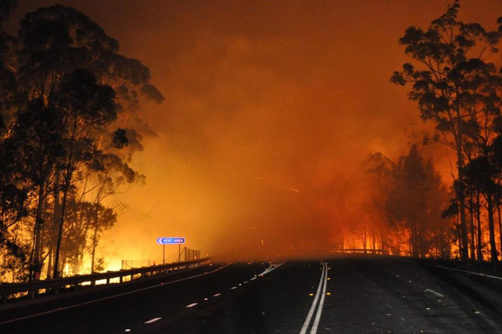 Fire crossing Princes Highway at Deans Gap fire in Shoalhaven, southern NSW.