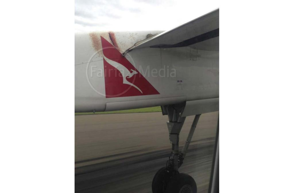 A snake on the wing of a flight from Cairns to Port Moresby.