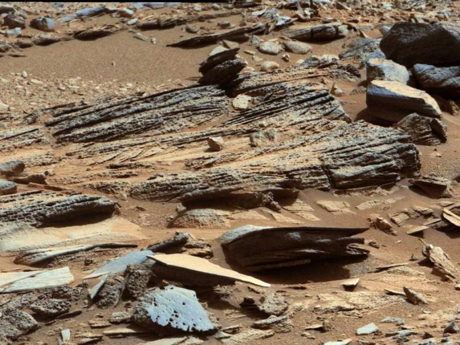 """An image from the Mast Camera on NASA's Mars rover Curiosity shows the surface of the planet with inclined layering known as cross-bedding in an outcrop called """"Shaler"""" on a scale of a few tenths of a meter, or decimeters."""