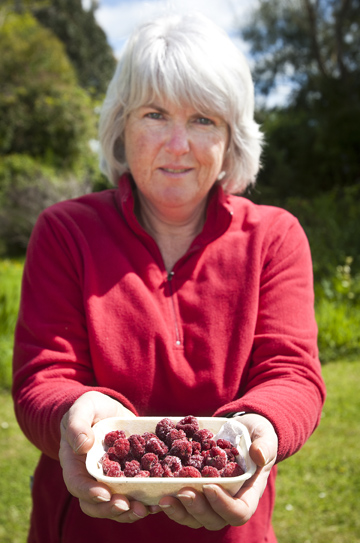 HARVEST: Joanne Turner with some of her frozen raspberries.