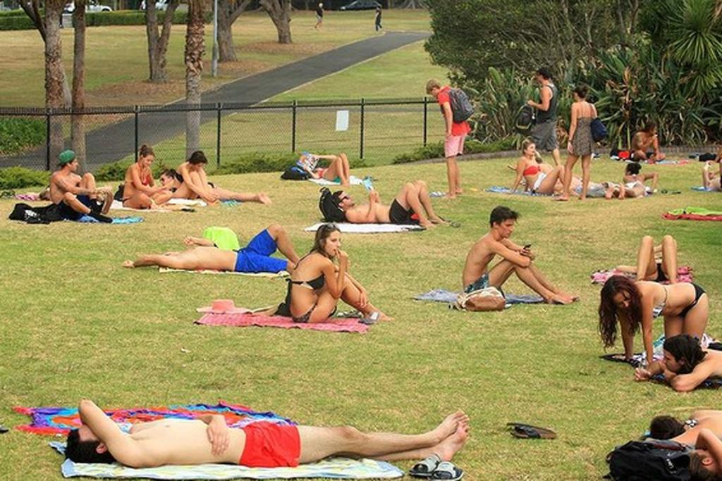 Swimmers and sun bathers at Victoria Park Pool, in Sydney's Glebe.