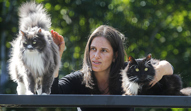PRO-CAT: Karen Jones of Ngaio with her cats Mouse, left, and Boots. She supports putting bells on cats but is against  eradication.