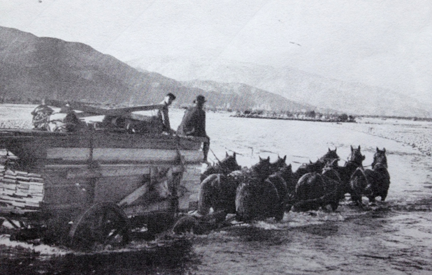 Hard life: Renwick man Peter Blick's grandfather sits atop his timber cargo while crossing the Wairau River before the first bridge was built 100 years ago.