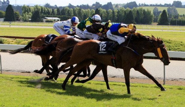VICTORIOUS:  Yazoom (Doni Prastiyou) stretches out for a dashing win at Gore yesterday.