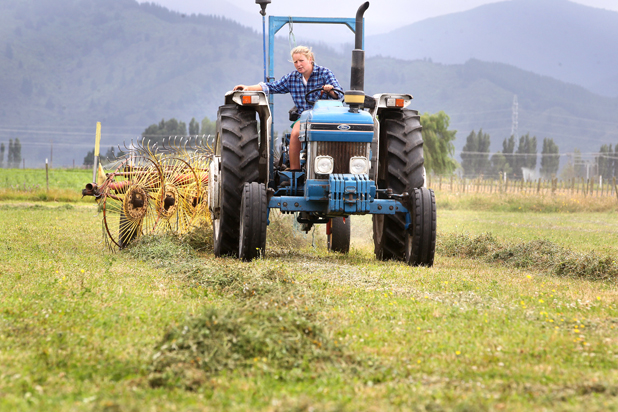 Kate Jordan rakes lucerne hay on her families Woodbourne farm.