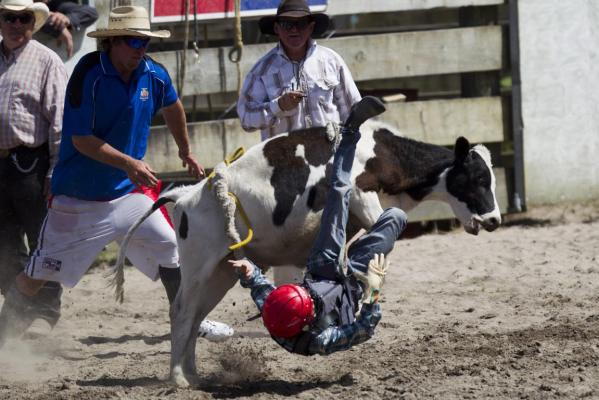 Huntly Rodeo 2013