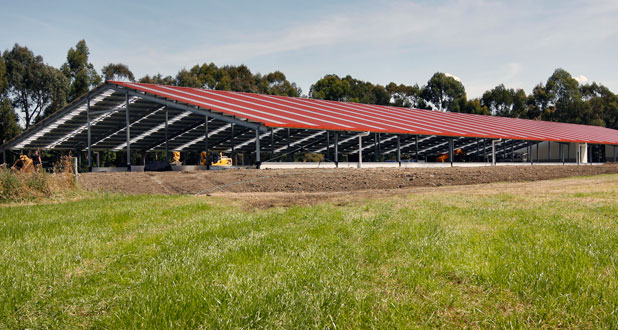 This 97-metre building will milk 300 cows using robots when it is completed at the end of April.