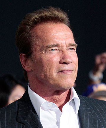 MORE TROUBLES: Arnold Schwarzenegger has been caught in another sex scandal.